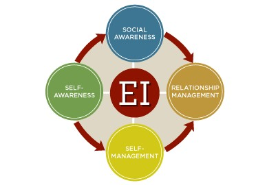 Four Components of EI and SI