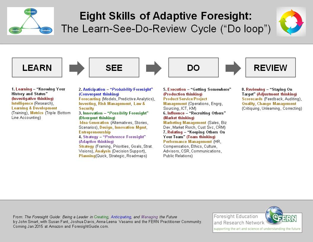 The Learn-See-Do-Review Cycle (Do loop), its Eight Skills and Twenty Functions
