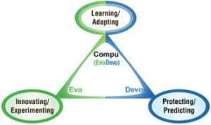 The 3 Ps as Social Roles: Innovating-Experimenting (Evo), Protecting-Predicting (Devo), and Learning-Adapting (Evo and Devo). Which role best describes you?