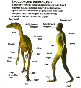The Dinosauroid Hypothesis. The most intelligent raptors may have inevitably converged to the humanoid form, if the K-T meteorite hadn't struck Earth 65 million years ago.
